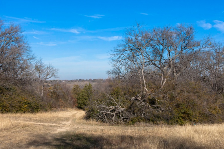 White Rock natural area, off Van Dyke at Brookhurst in Dallas