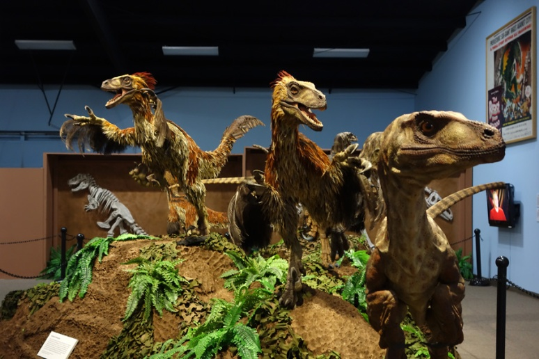 Feathered raptors. Were some dinosaurs actually flightless birds?