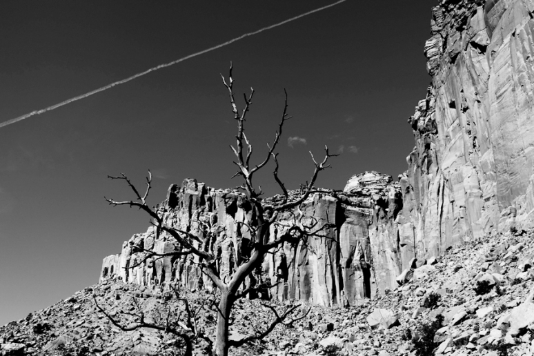 Drawing the line, Capitol Gorge