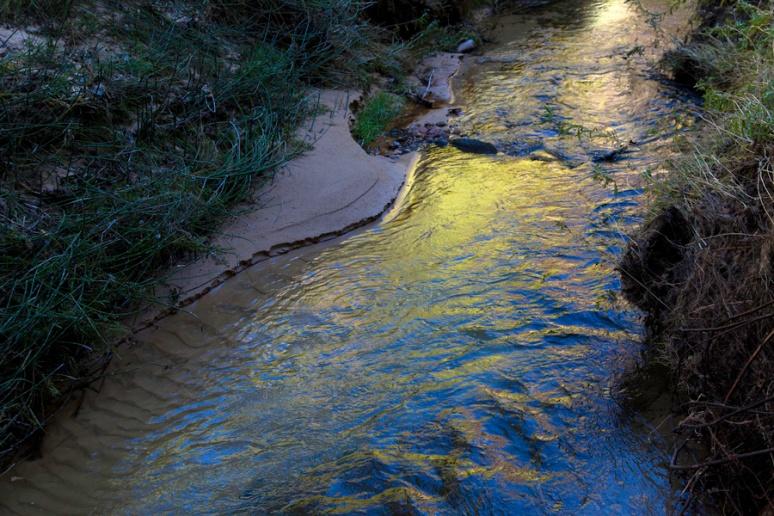 Calf Creek: water and sandbar