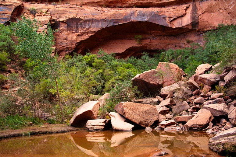 Reflecting pool: head of canyon