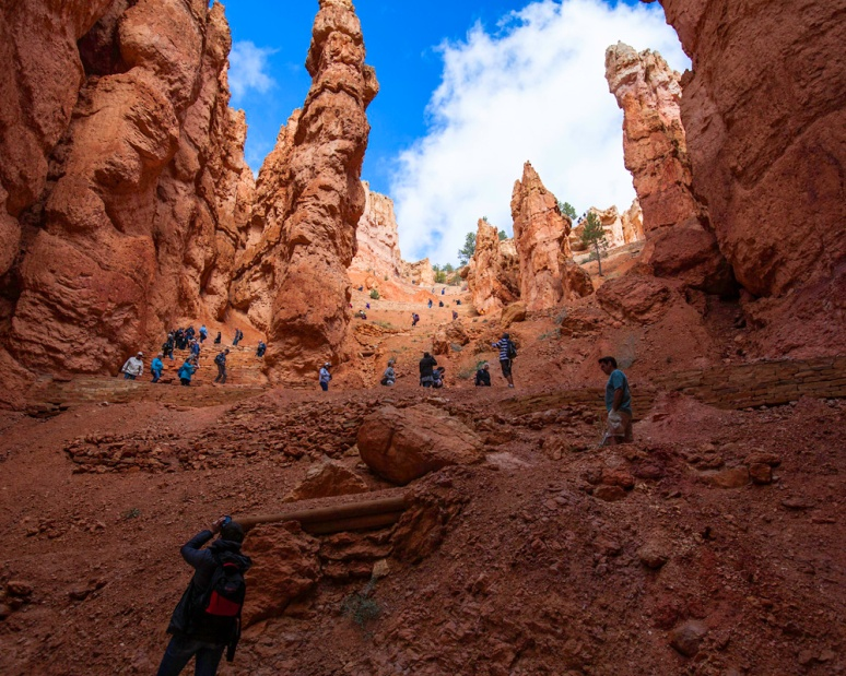 Oh, the humanity! Busloads of people descend the Navajo Trail