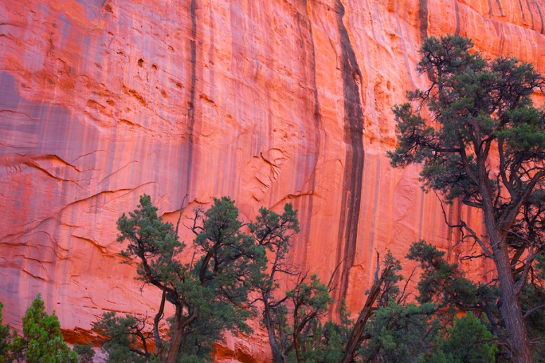 Still wet wall: Long Canyon
