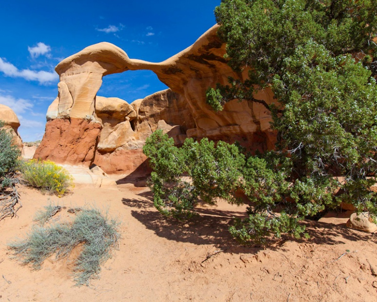 Metate Arch - smaller than you think!