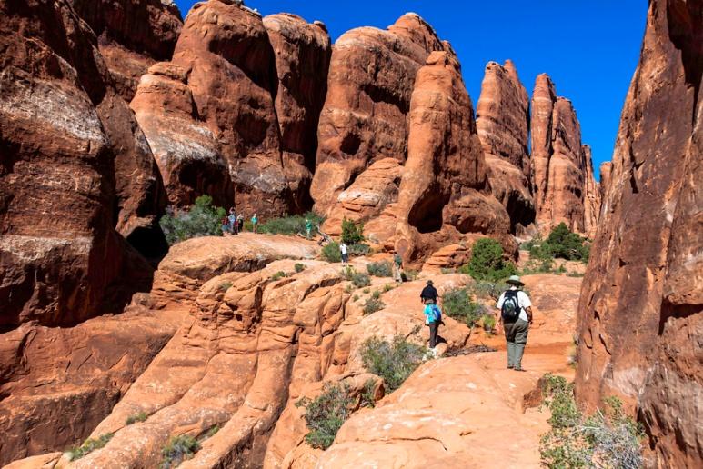 Wanderers among the rocks.