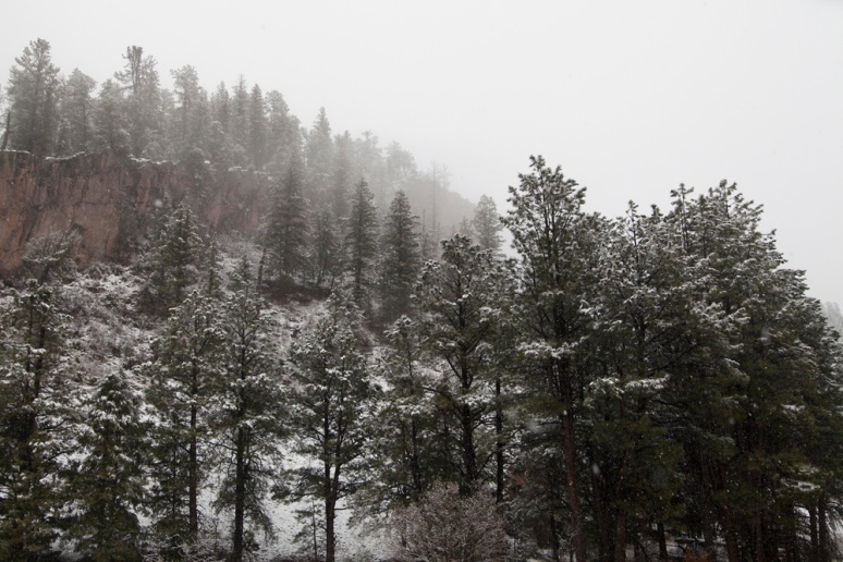 Late April snowfall: Rt. 4 N. of Jemez Springs